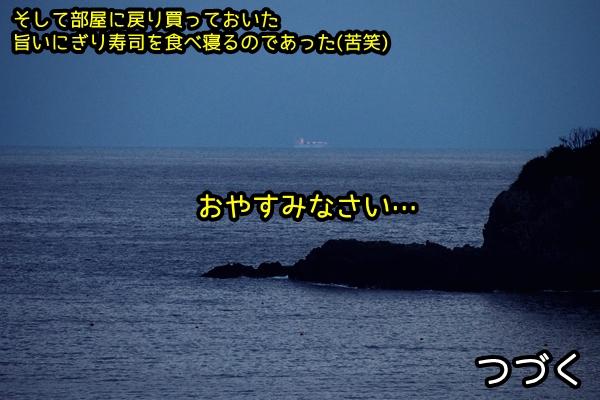 ニャポ旅36 その4 下田猫散策②