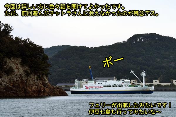 ニャポ旅36 その5 下田猫散策③