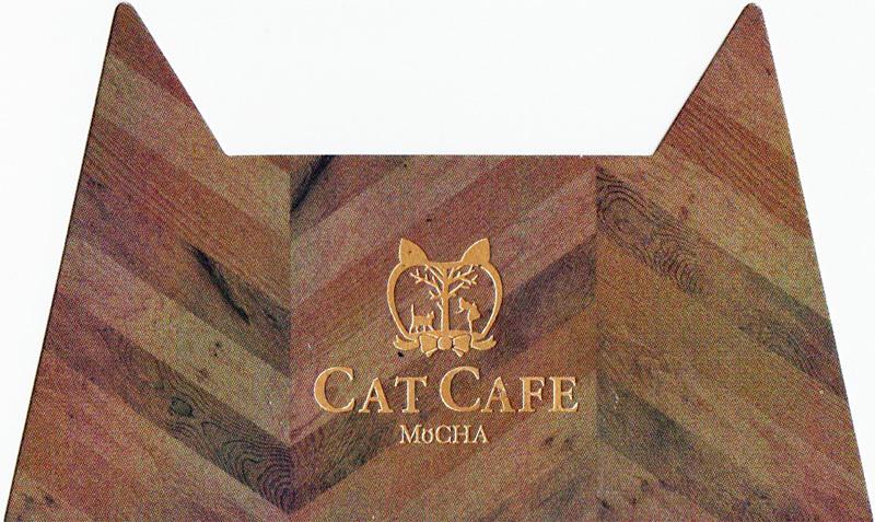 猫カフェMoCHA 竹下通り店