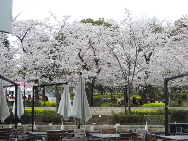 Union Square Tokyo