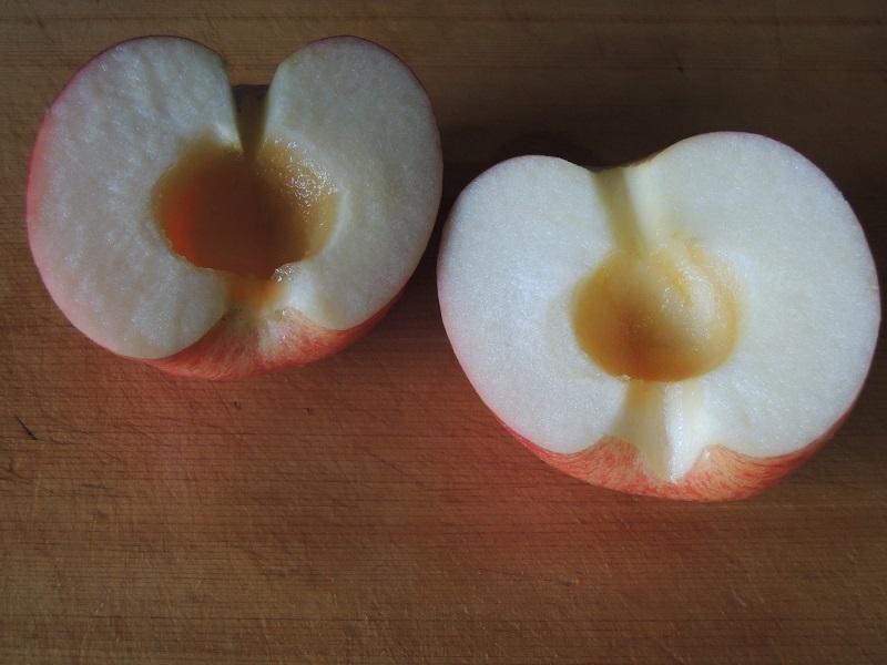 リンゴの芯を取ります