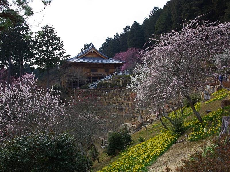 石山寺 光堂