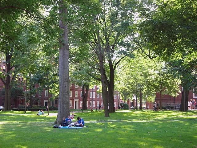 ハーバード大学って、どんなところ?