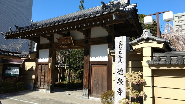 1704sakura004.jpg