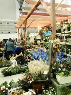 my-garden 150