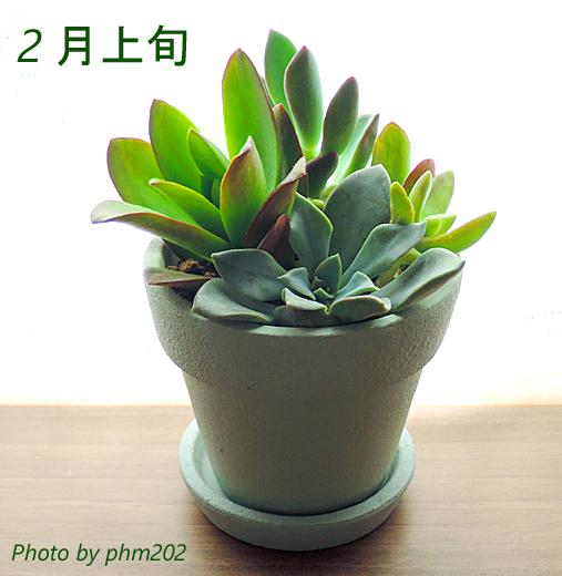 DSCN7360-3.jpg