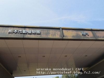 IMGP2227.jpg