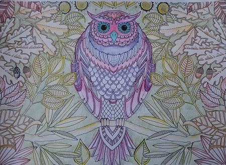 ジョハンナ・バスフォード 秘密の花園 フクロウ1