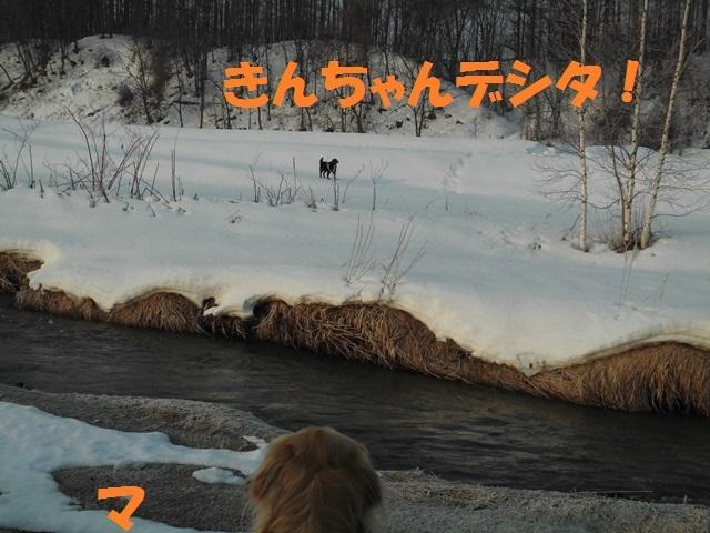 CIMG4598_P.jpg