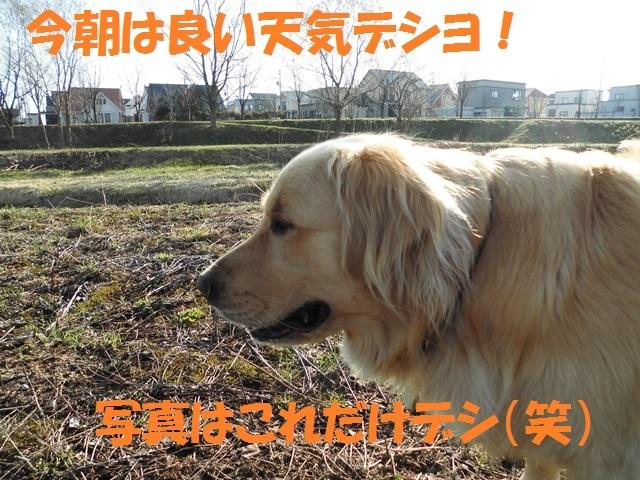 CIMG4761_P.jpg