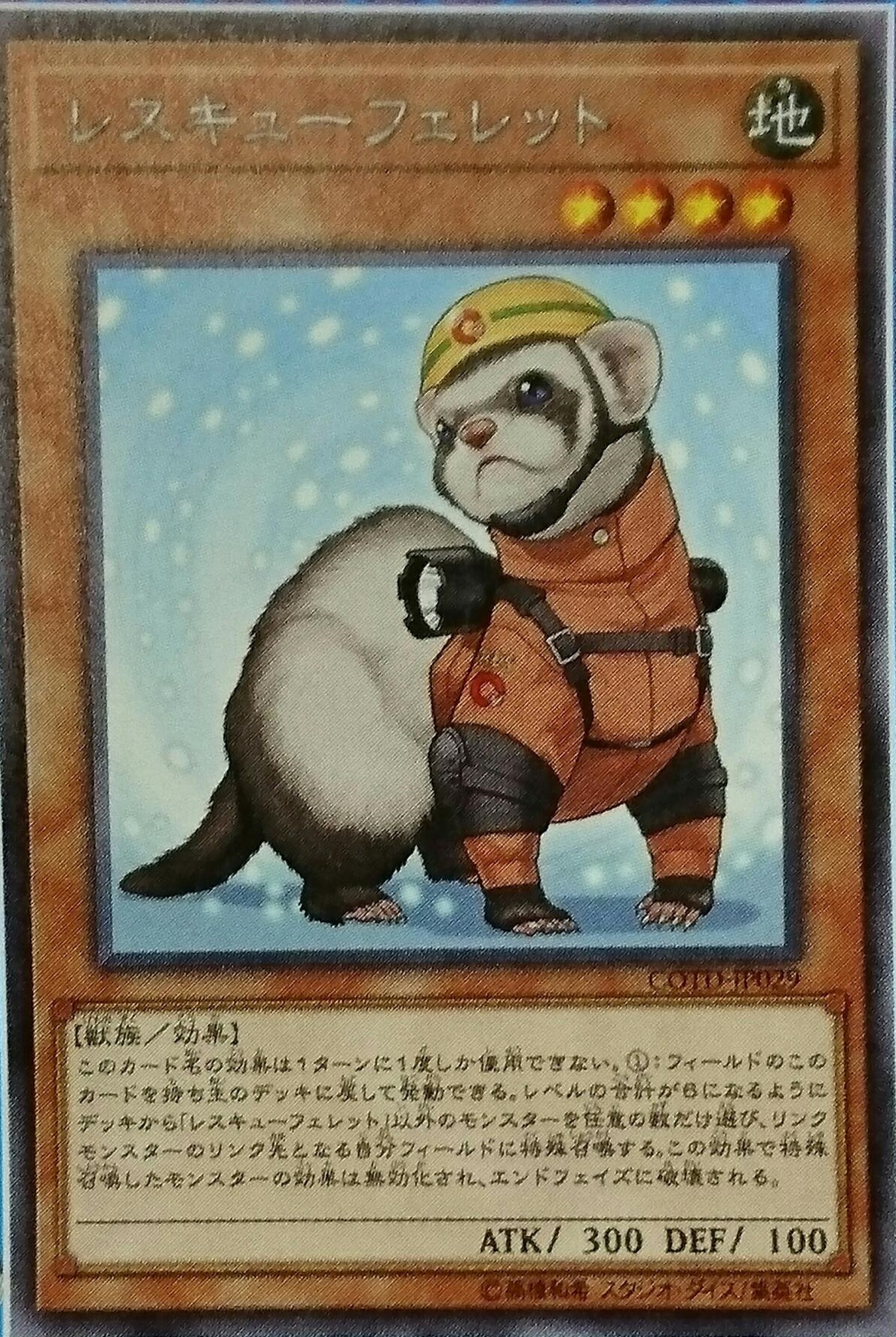 rescueferret.jpg