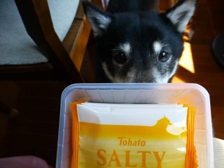 ソルティ塩レモン8