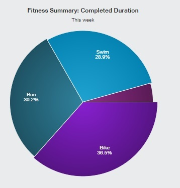 練習強度、その効果と回復のバランス(強化期1-2週目)