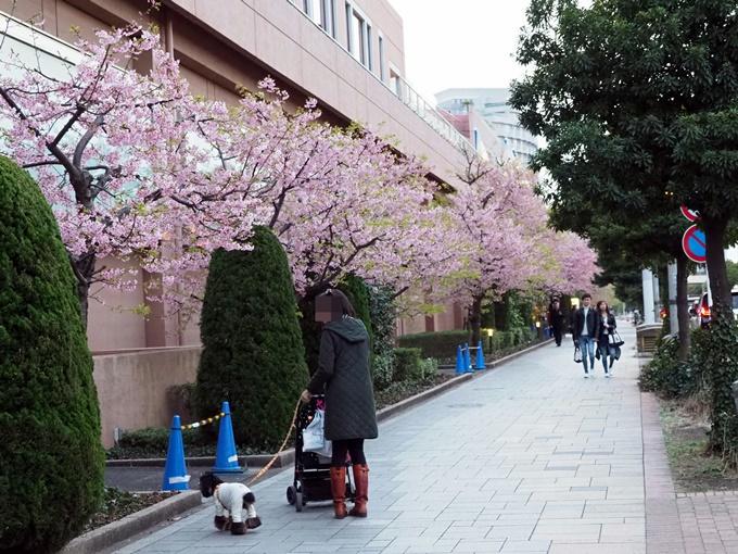blogP2261559.jpg