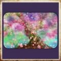 桜♡雪sakura fubuki