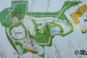 小堤山公園2