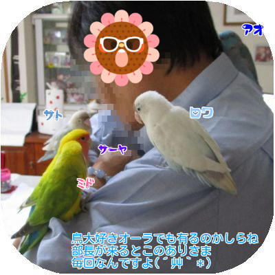 20170415134209aa9.png