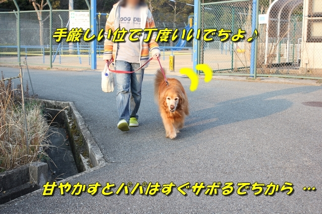 201703291952450cb.jpg