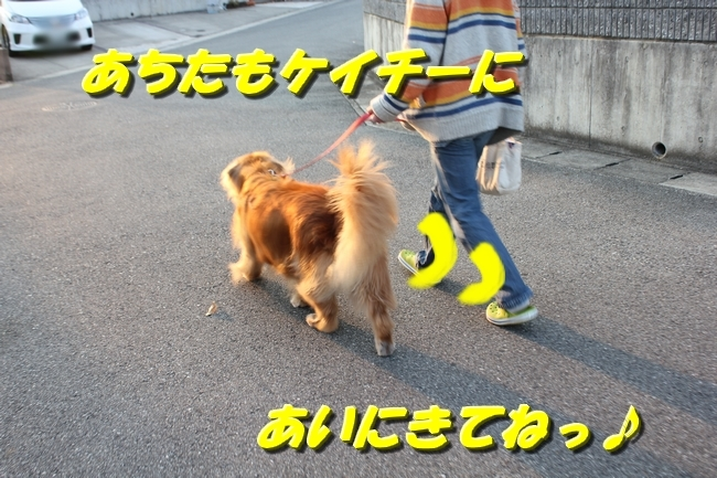 20170329195251c10.jpg