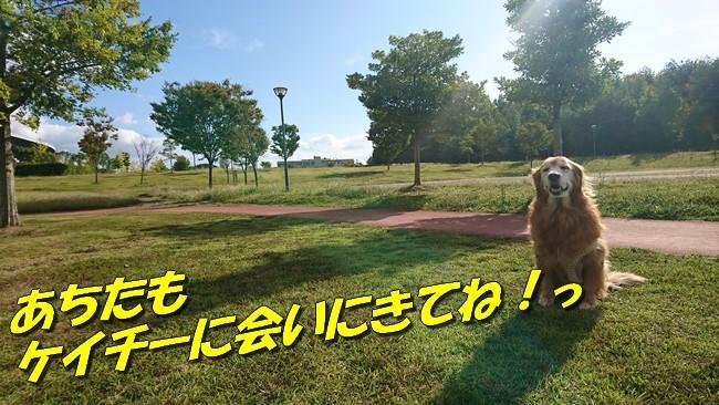 DSC_0179.jpg