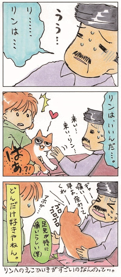 猫じじぃ 3-3