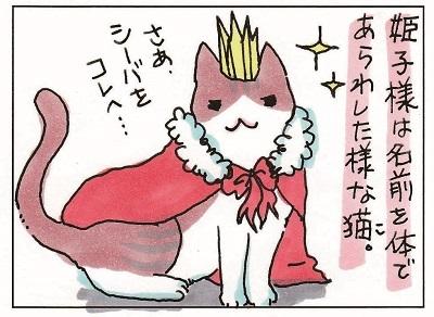 プリンセスな姫子 1-2