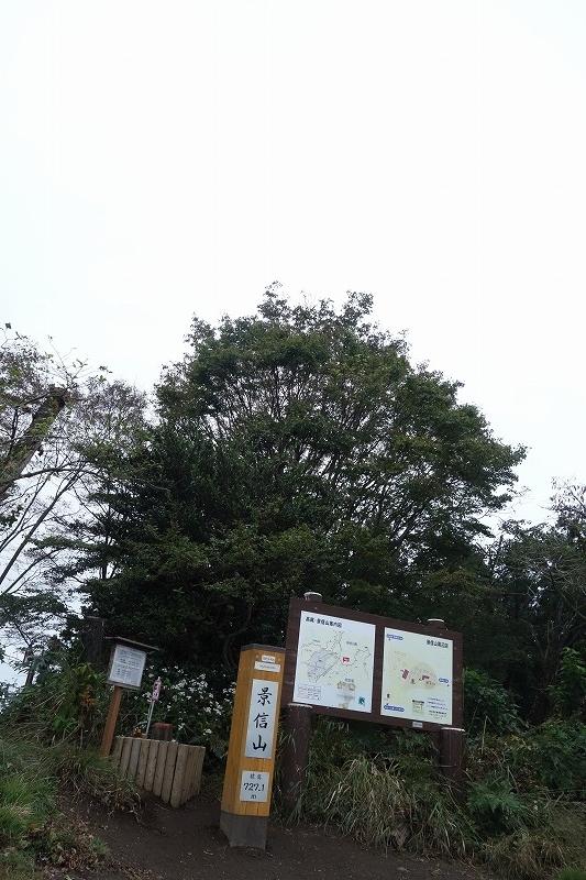 DSC01179.jpg