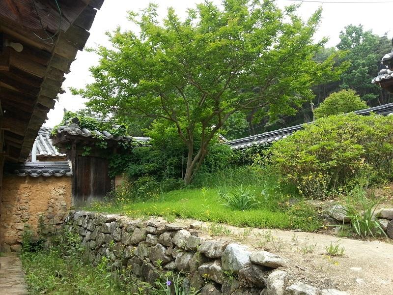 2015-05-11-10-05-45_photo.jpg