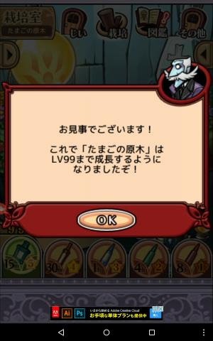 なめこ栽培 2017年4月更新たまごの原木_09