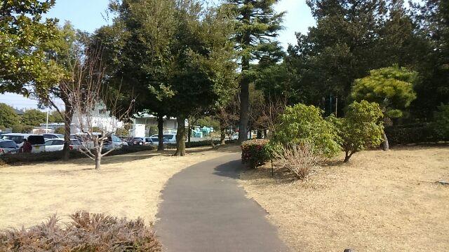 公園の遊歩道1