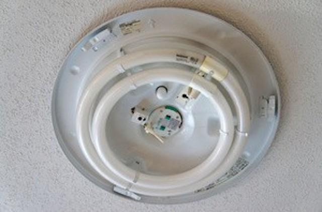 DSC06753-thumb-300x198-3063.jpg