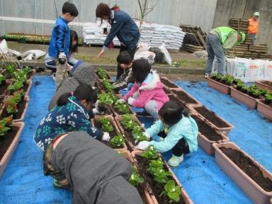 児童と学生も参加しての花植えを