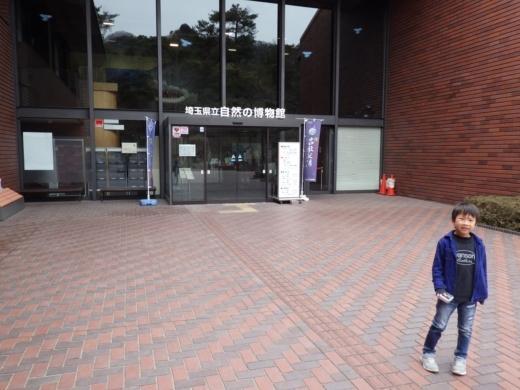 埼玉県立自然の博物館 (7)