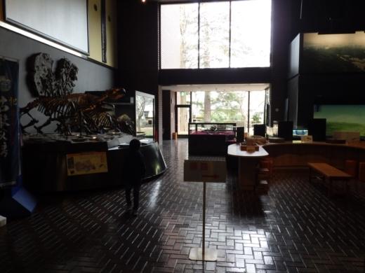埼玉県立自然の博物館 (9)