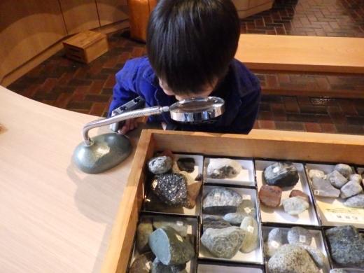 埼玉県立自然の博物館 (10)