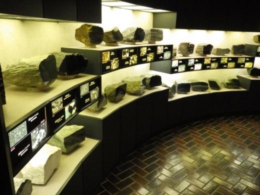 埼玉県立自然の博物館 (15)