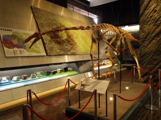 埼玉県立自然の博物館 (16)