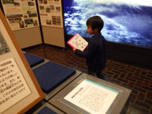 埼玉県立自然の博物館 (23)
