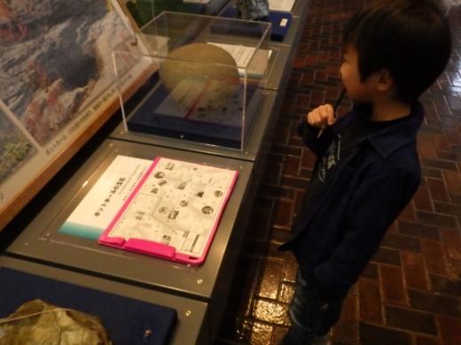 埼玉県立自然の博物館 (24)