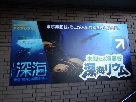 八景島シーパラダイス (40)