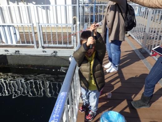 シーパラ釣り堀 (19)