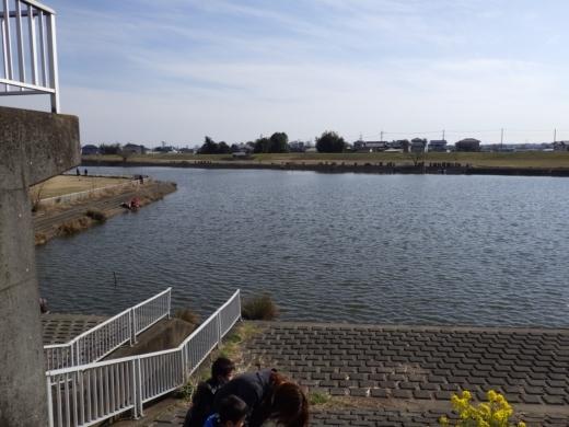 びん沼川の水門の方 (13)