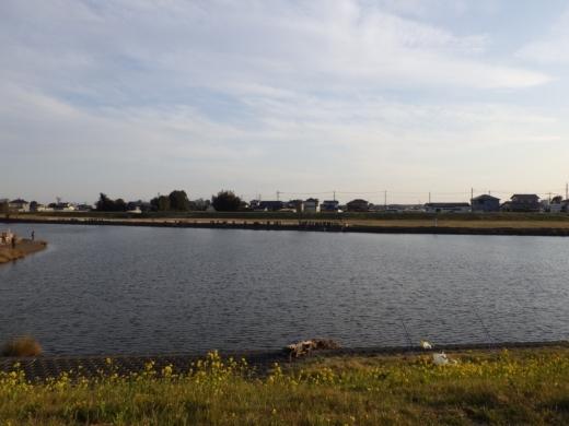 びん沼川の水門の方 (18)