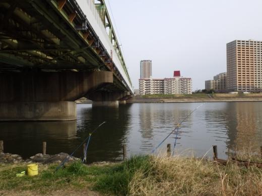 江戸川松戸周辺 (8)