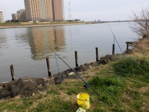 江戸川松戸周辺 (7)