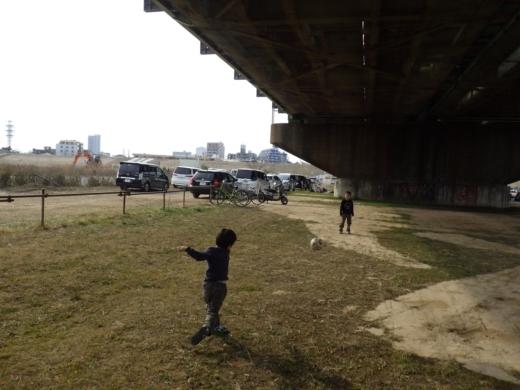 江戸川松戸周辺 (10)