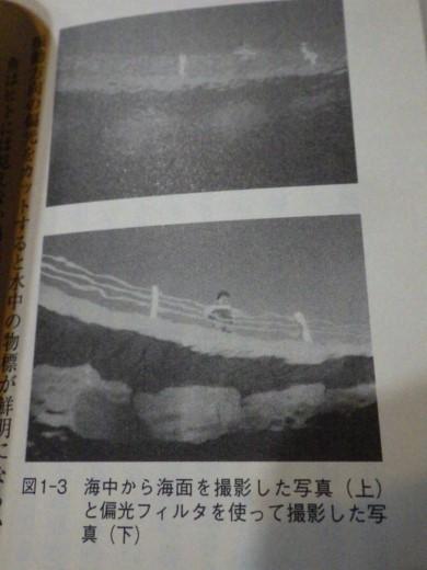 釣り入門 (4)