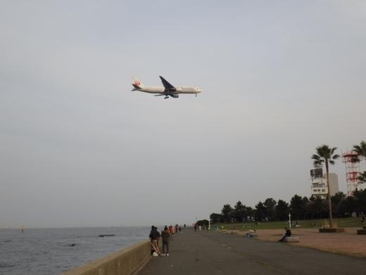城南島海浜公園 (34)