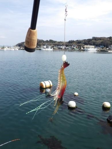 金田漁港 (6)