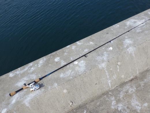 金田漁港 (7)